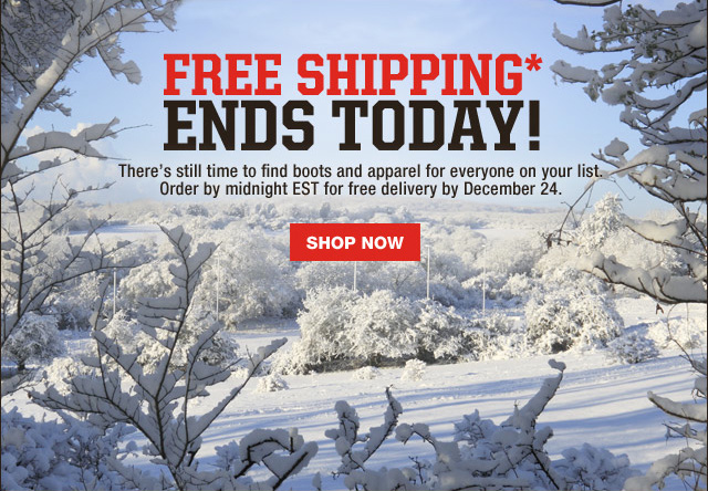 Free Shipping Ends Today Shop Now