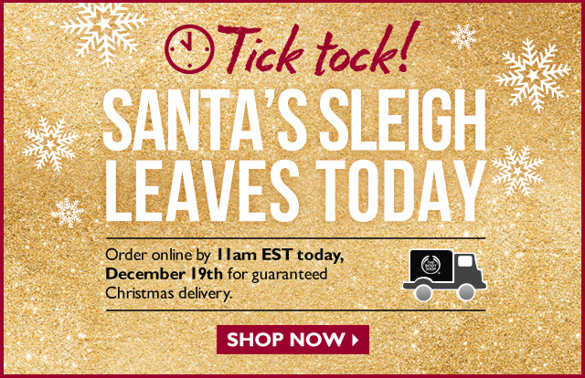 Tick Tock! SANTA'S SLEIGH LEAVES TODAY -- Order online by 11am EST today, December 19th for guaranteed Christmas delivery. -- SHOP NOW