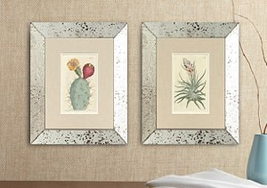 Antique Hand-Colored Horticulture Prints