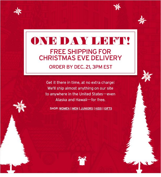 ONE DAY LEFT! FREE SHIPPING FOR CHRISTMAS EVE DELIVERY - ORDER BY DEC. 21, 3PM EST
