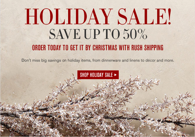 HOLIDAY SALE! SAVE UP TO 50% - ORDER TODAY TO GET IT BY CHRISTMAS WITH RUSH SHIPPING - SHOP HOLIDAY SALE