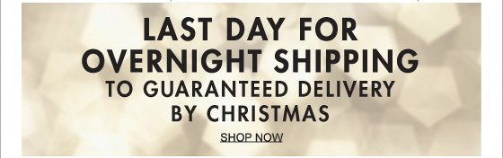 LAST DAY FOR OVERNIGHT SHIPPING TO GUARANTEED DELIVERY BY CHRISTMAS