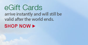 eGift Cards arrive instantly and will still be valid after the world ends. | SHOP NOW