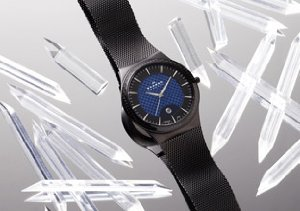 Skagen Men's Watches