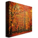 Red November Canvas Art