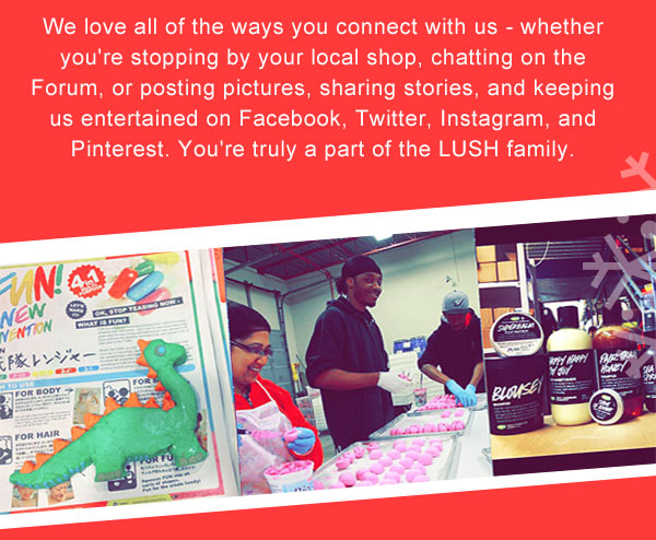 We love all of the ways you connect with us - whether you're stopping by your local shop, chatting on the Forum, or posting pictures, sharing stories, and keeping us entertained on Facebook, Twitter, Instagram, and Pinterest.