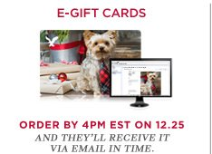 E-Gift Cards | Order By 4PM EST On 12.25 And She'll Receive It Via Email In Time!