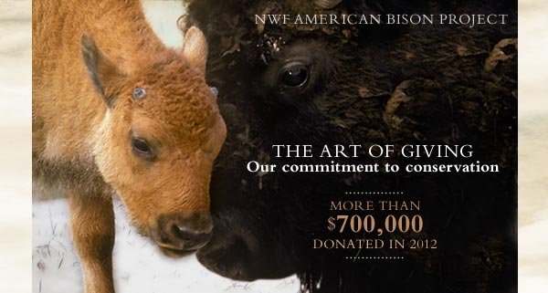 THE ART OF GIVING Our commitment to conservation. More than $700,000 donated in 2012.