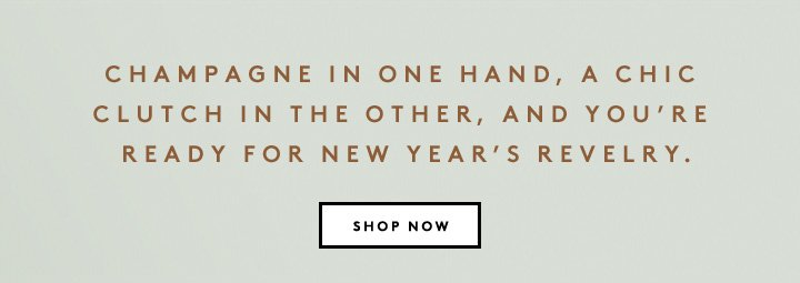 Ready for New Year's Eve? Shop stylish clutches from Narciso Rodriguez and more.