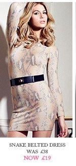 Snake Belted Dress