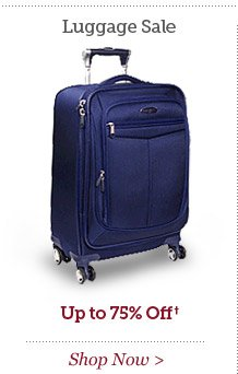 Winter Luggage Sale