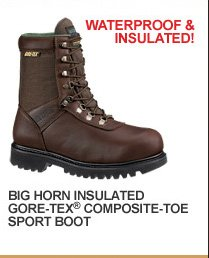 Big Horn Insulated GORE-TEX Composite-Toe Sport Boot