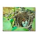 Egg Nest Wood Sign