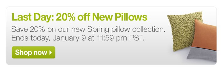 Last Day: 20% off New Pillows