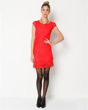 Everly Short Sleeve Lace Dress