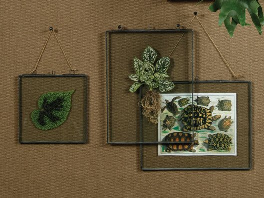 Combine these artisinal-style frames with your own treasured items for truly one-of-a-kind wall hangings.