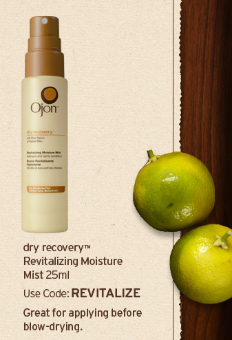 dry  recovery revitalizing Moisture Mist 25ml Use code REVITALIZE Great for  applying before blow drying