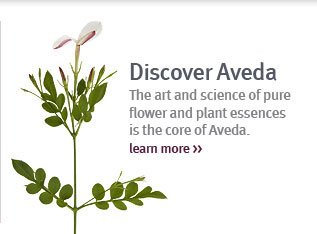 discover aveda. learn more.