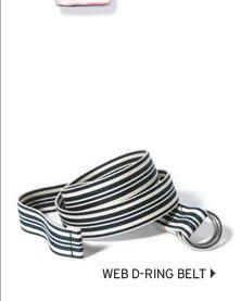 Web D-Ring Belt
