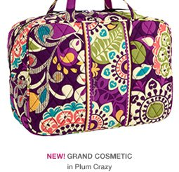 NEW! Grand Cosmetic in Plum Crazy
