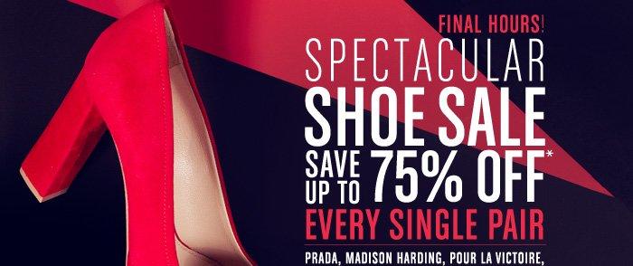 Spectacular Shoe Sale