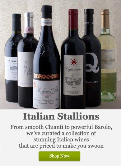 Italian Stallions - Shop Now
