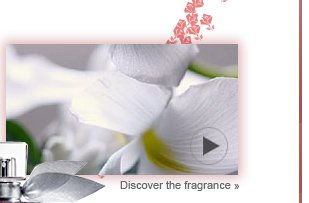 Discover the fragrance »
