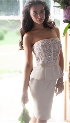V I P Embroidered Peplum Dress
