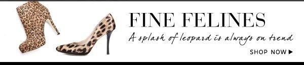 Shop Fine Felines Collection