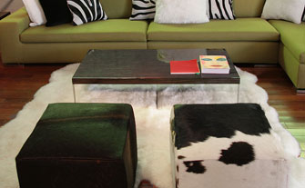 Genuine Brazilian Cowhide Rugs & Pillows - Visit Event