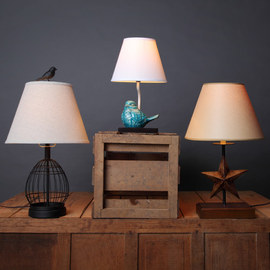 Lighting Extravaganza Collection
