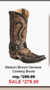 Stetson Boot Image
