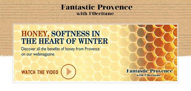 Honey, Softness in the Heart of Winter