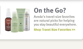 on the go? shop travel-size  favorites.