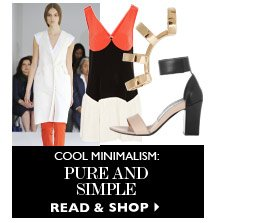 COOL MINIMALISM: PURE AND SIMPLE READ & SHOP