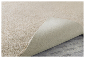 FREE In-Home Carpet Measurement. Get Started