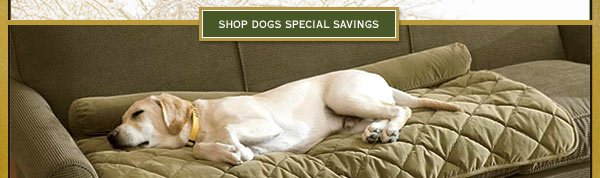 Shop dogs special Savings