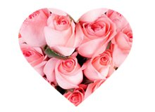 Love at First Sight Flowers by KaBloom