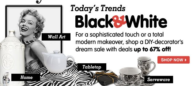 Today's Trends - Black & White. For a sophisticated touch or a total modern makeover, shop a DIY-decorator's dream sale with deals up to 67% off!