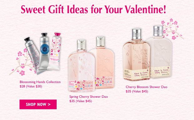 Sweet Gift Ideas for Your Valentine! Show your valentine some love with these special gifts!