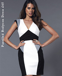 Panelled Bodycon Dress