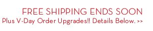 FREE SHIPPING ENDS SOON Plus V-day Order Upgrades!! Details Below.