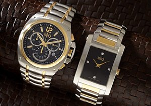 ESQ by Movado Watches