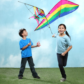 Go Fly a Kite Collection