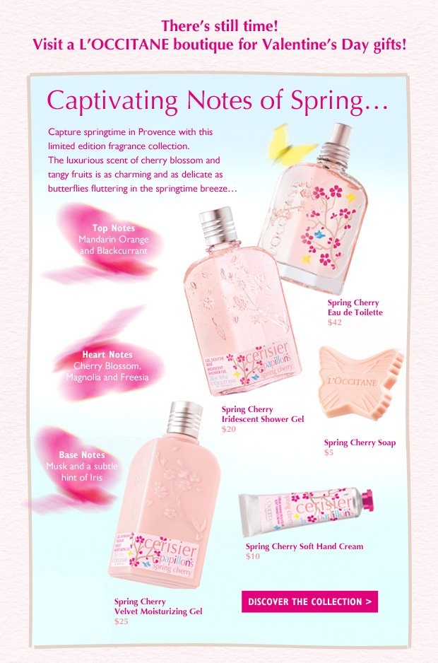 There's still time!  Visit a L'Occitane boutique for Valentine's Day gifts! Captivating Notes of Spring…   Capture springtime in Provence with this limited edition fragrance collection.  The luxurious scent of Cherry Blossom and Tangy fruits is as delicate as butterflies fluttering in the springtime breeze…   Top notes of Mandarin Orange and blackcurrant, heart notes of Cherry Blossom, magnolia and freesia, and base notes of musk and a subtle hint of iris