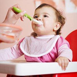 Eat Up: Feeding Essentials