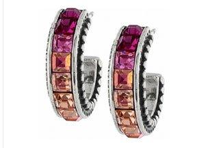Spectrum Pink Earrings