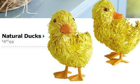 Natural Ducks $4.95 ea