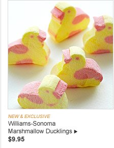 NEW & EXCLUSIVE - Williams-Sonoma Marshmallow Ducklings, $9.95