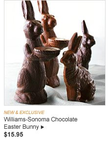 NEW & EXCLUSIVE - Williams-Sonoma Chocolate Easter Bunny, $15.95